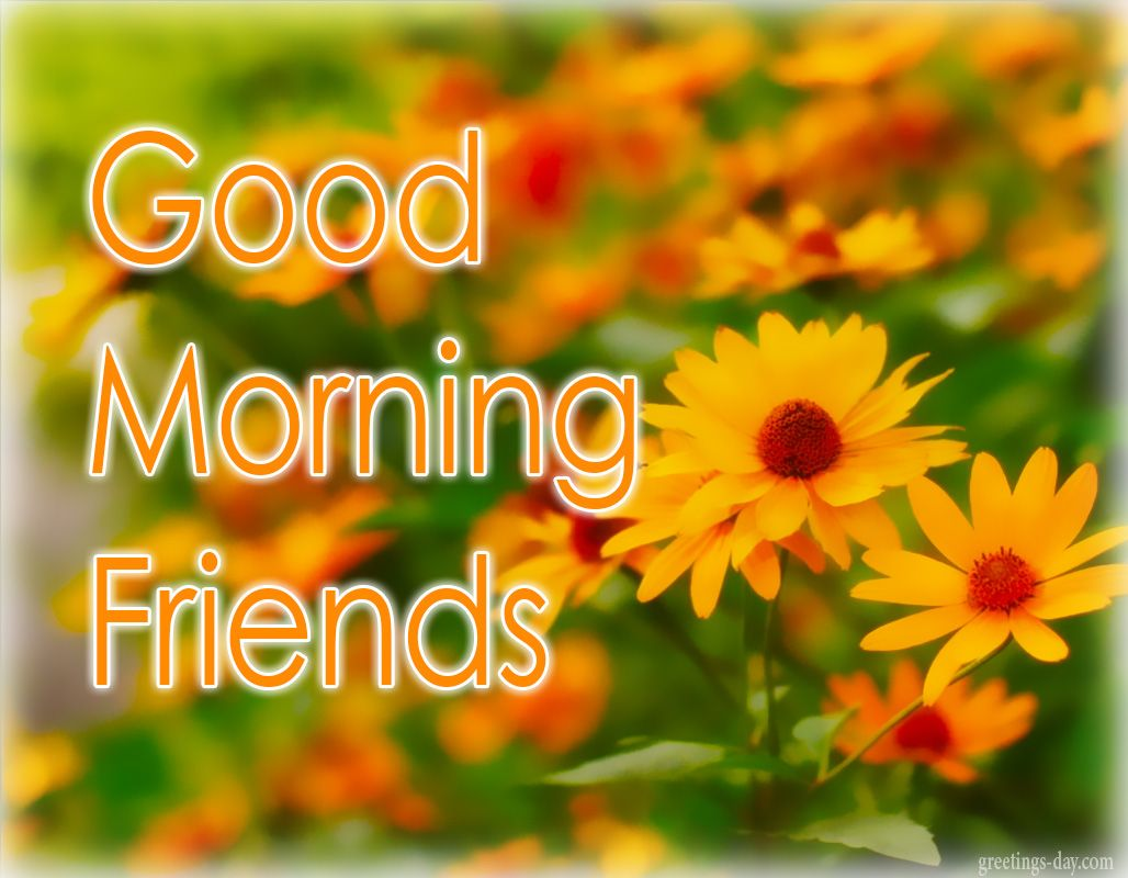 Good Morning Best Ecards Gifs Messages Goodmorning Http