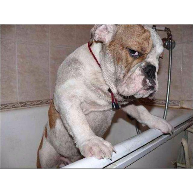 I told u I don't need a bath