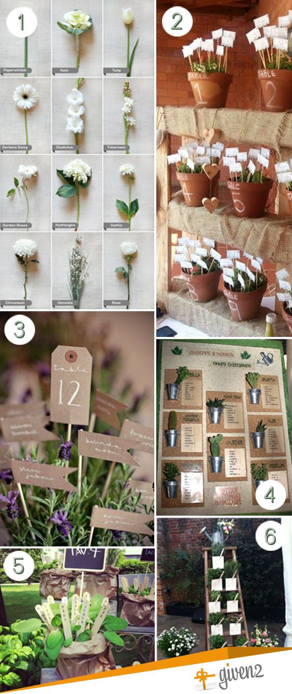 Matrimonio Tema Natura Nomi Tavoli : Tableau de mariage aromatic herbs erbe aromatiche vintage