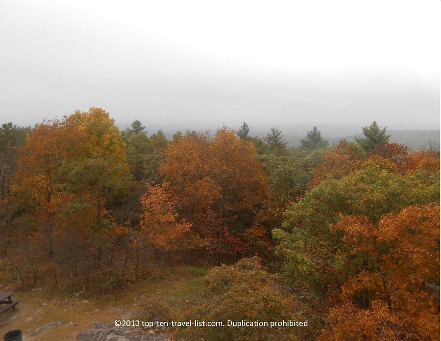 Pretty orange #fall foliage from the Eliot Tower lookout at Blue Hills Reservation in #Massachusetts.