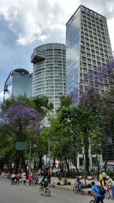 Paseo de la Reforma l mexico city #mexico  df   chilango   pachucochilango.comMexico.