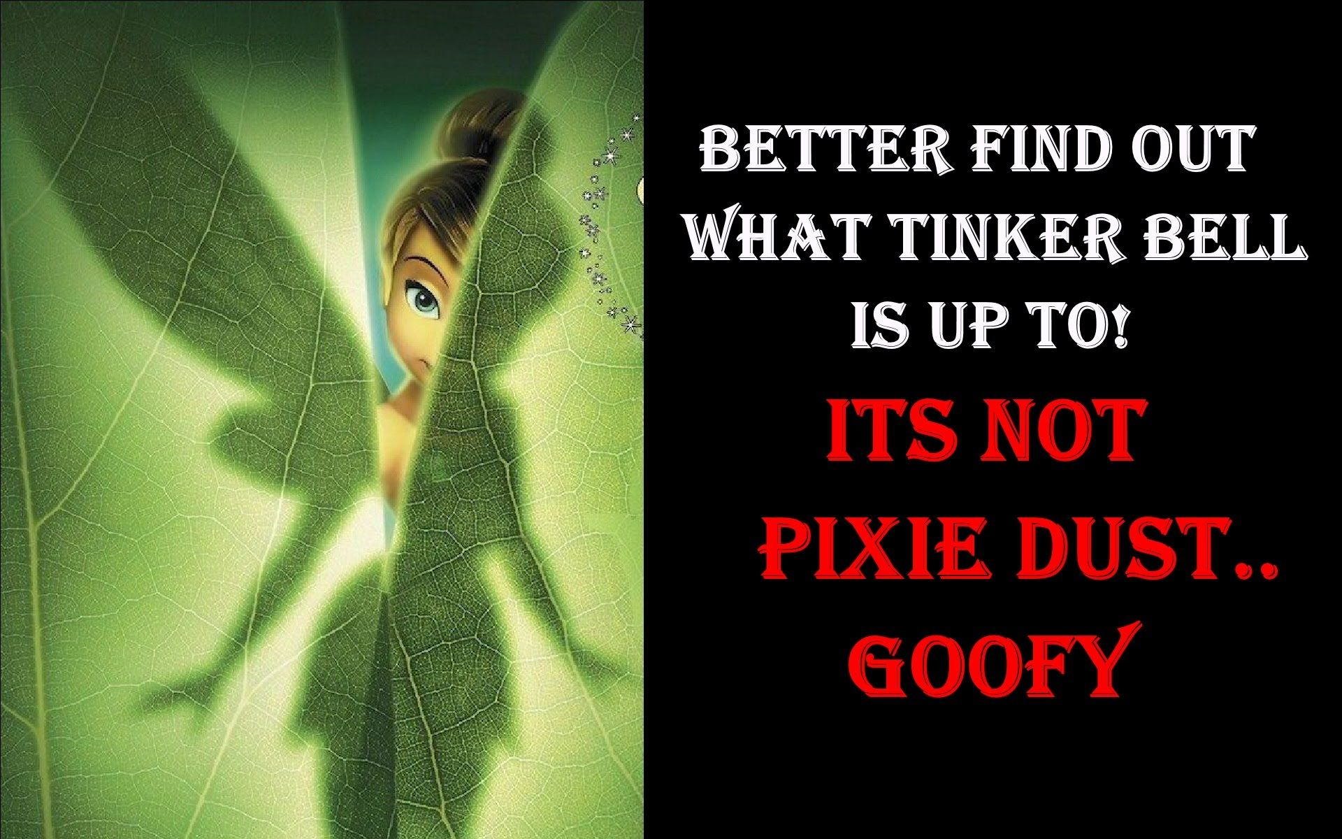 ITS CHEMTRAILS..Not Pixie Dust Goofy!