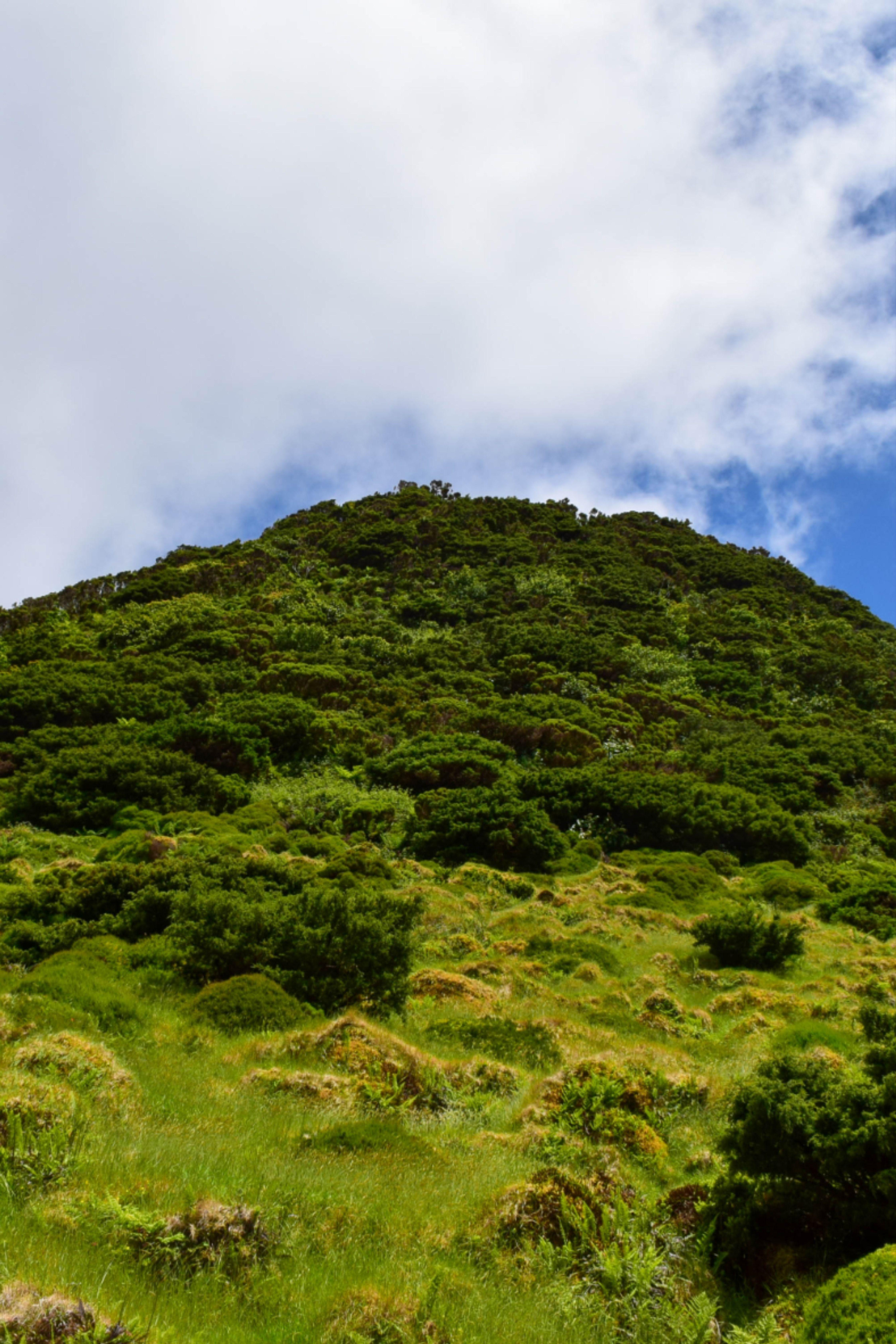 Azores Islands Beautiful Nature Nature Travel Photography