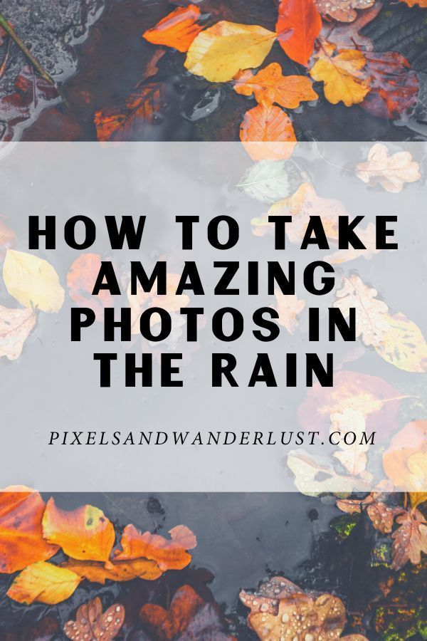 Don't let the rain discourage you from going out to shoot! You can still take amazing pictures despite the bad weather. Here are some photography tips and techniques to help you! #howtotake