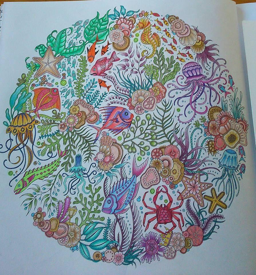 coloriage anti stress ocean
