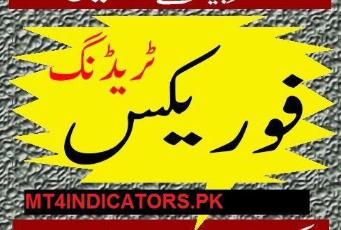 Free download forex books in urdu