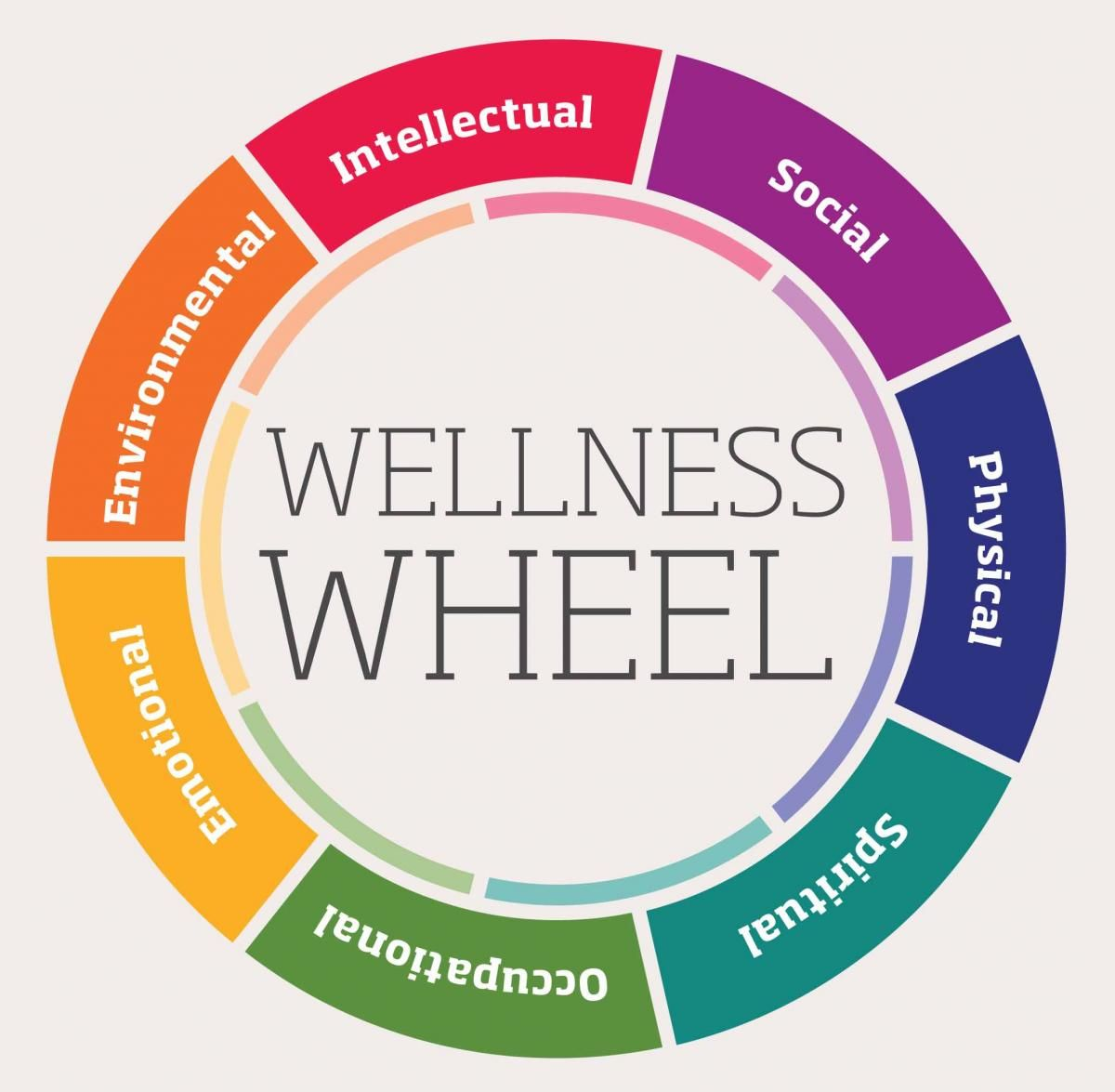 Creating A Wellness Plan How Good Can You Feel