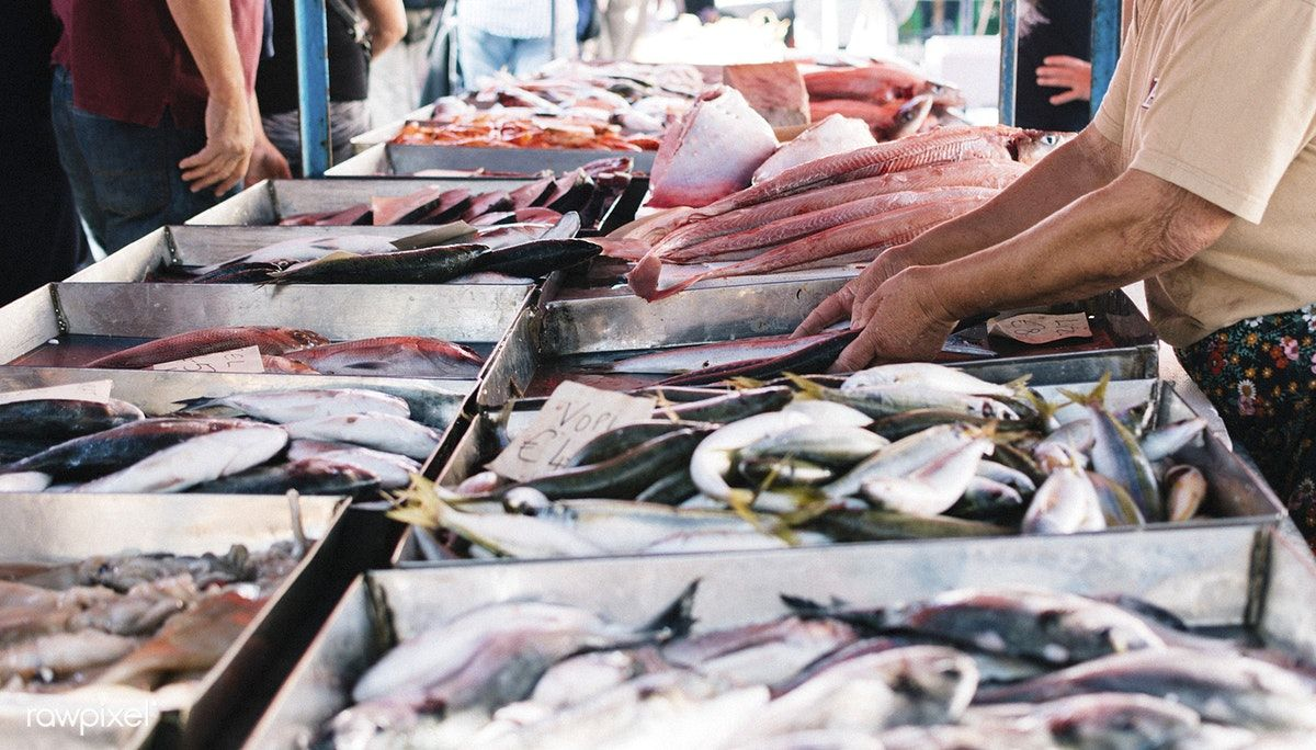 Fishmonger Selling Fish At A Fish Market Free Image By Rawpixel Com Fish Food Insecurity Free Images