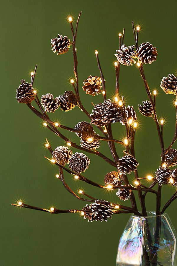 Twinkling Pinecone Branches | Anthropologie