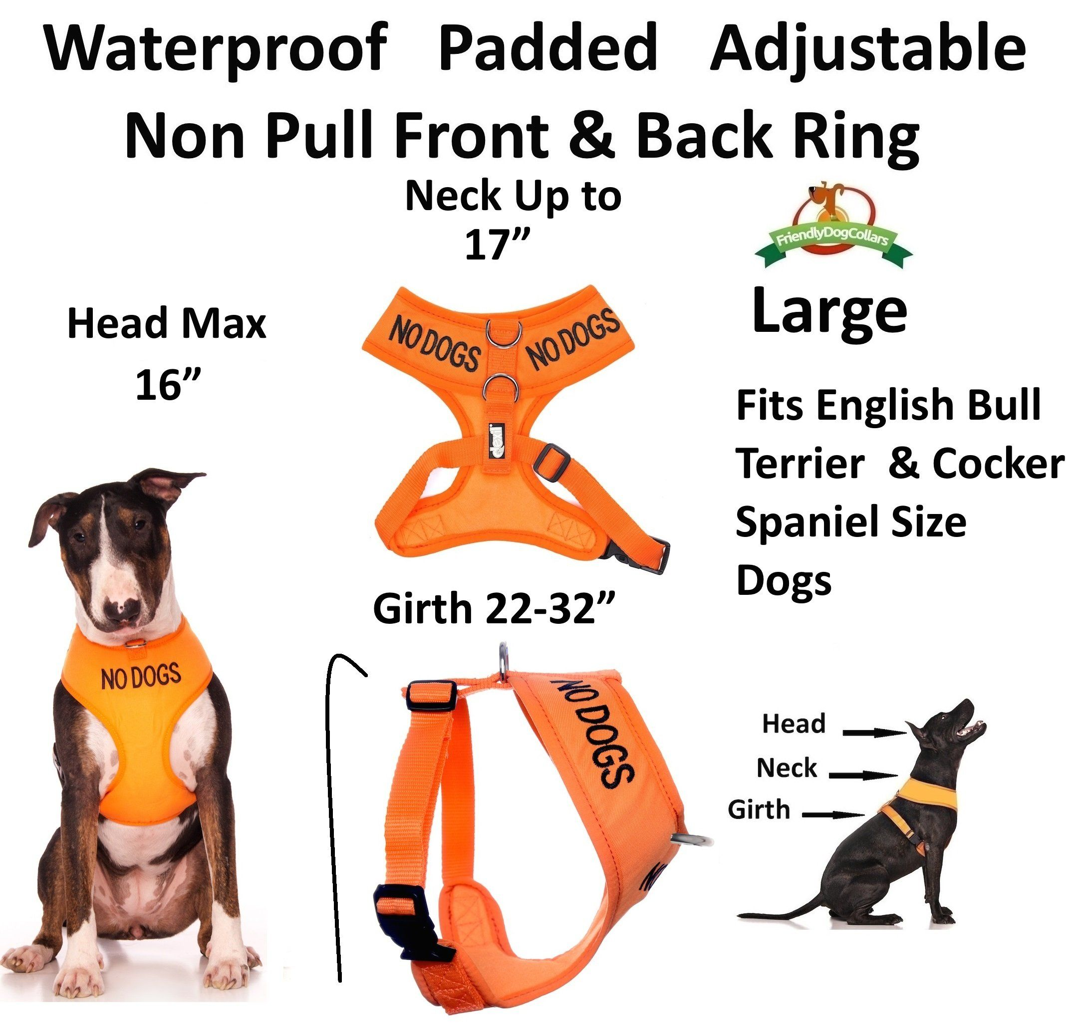 No Dogs Not Good With Other Dogs Orange Color Coded Nonpull Front