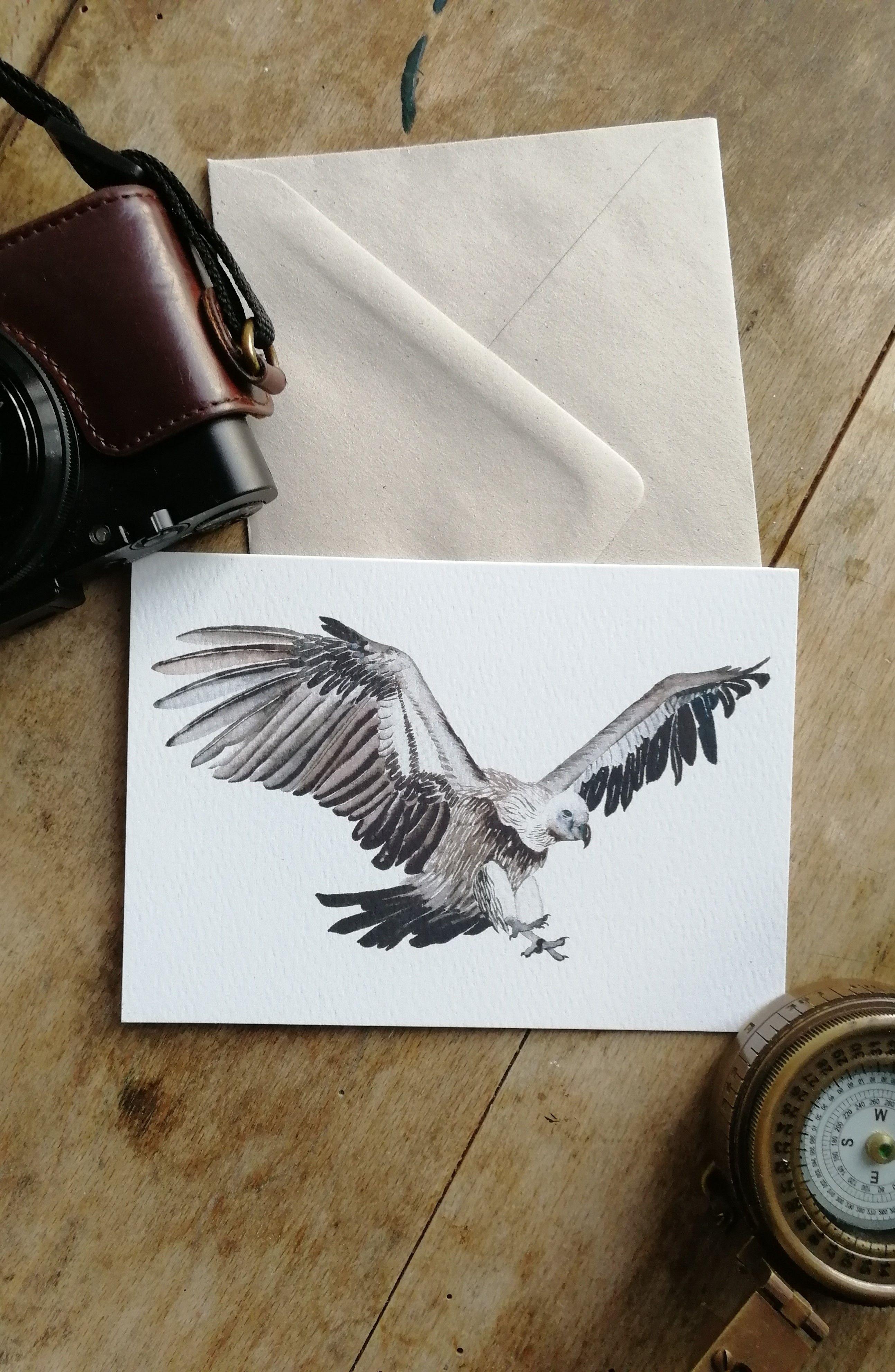 Vulture art card, watercolour bird card, flying bird art