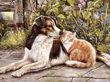 Oil Painting HD Print Picture Animal Cat and dog on canvas L476