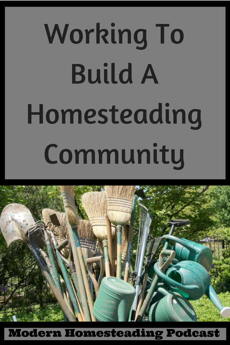 Working To Build A Homesteading Community Community Gardening