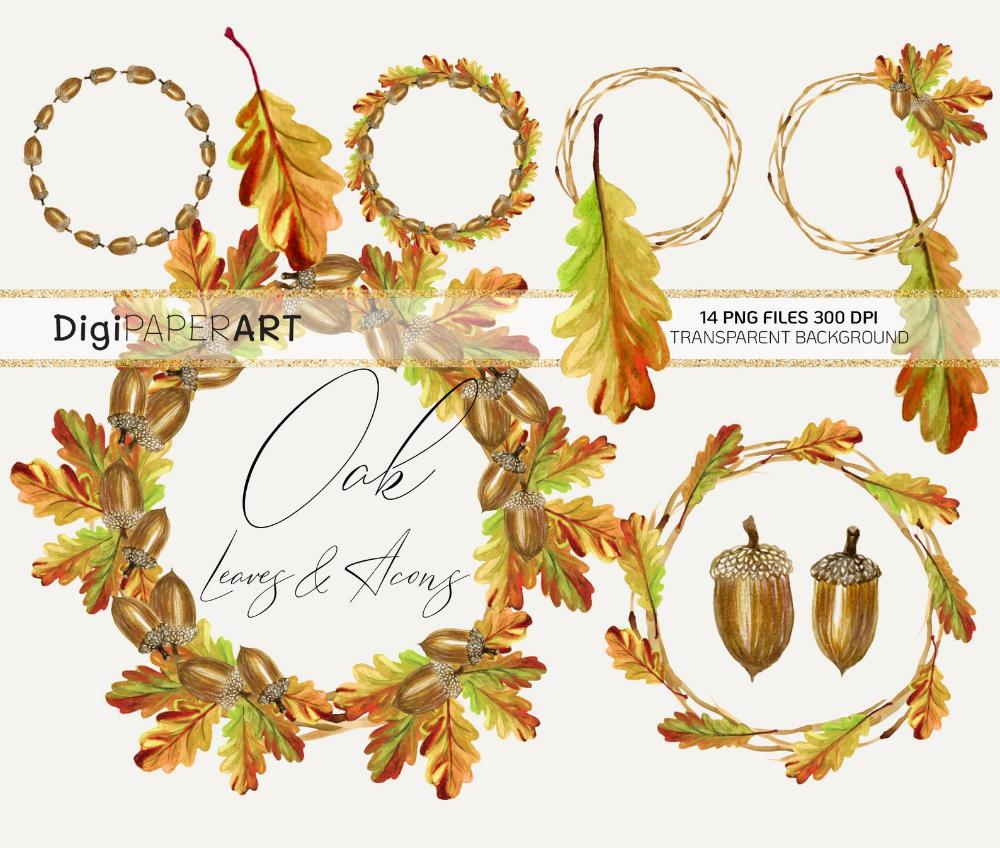 Watercolor Oak Leaves And Acorns Clipart Fall Wreath Png Etsy Wreath Clip Art Clip Art Wreath Clip