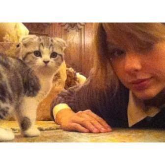 Meredith & Taylor.