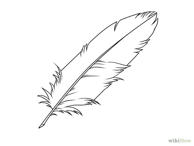 Line Art Feather : How to draw a indian feather step by