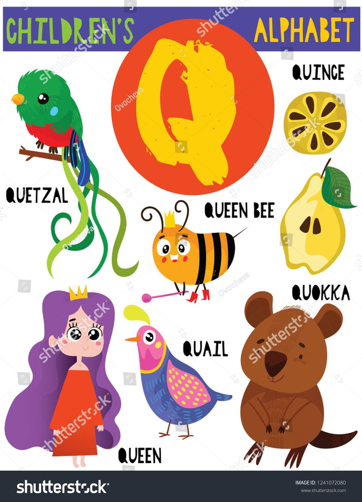 11++ Animal with letter q ideas