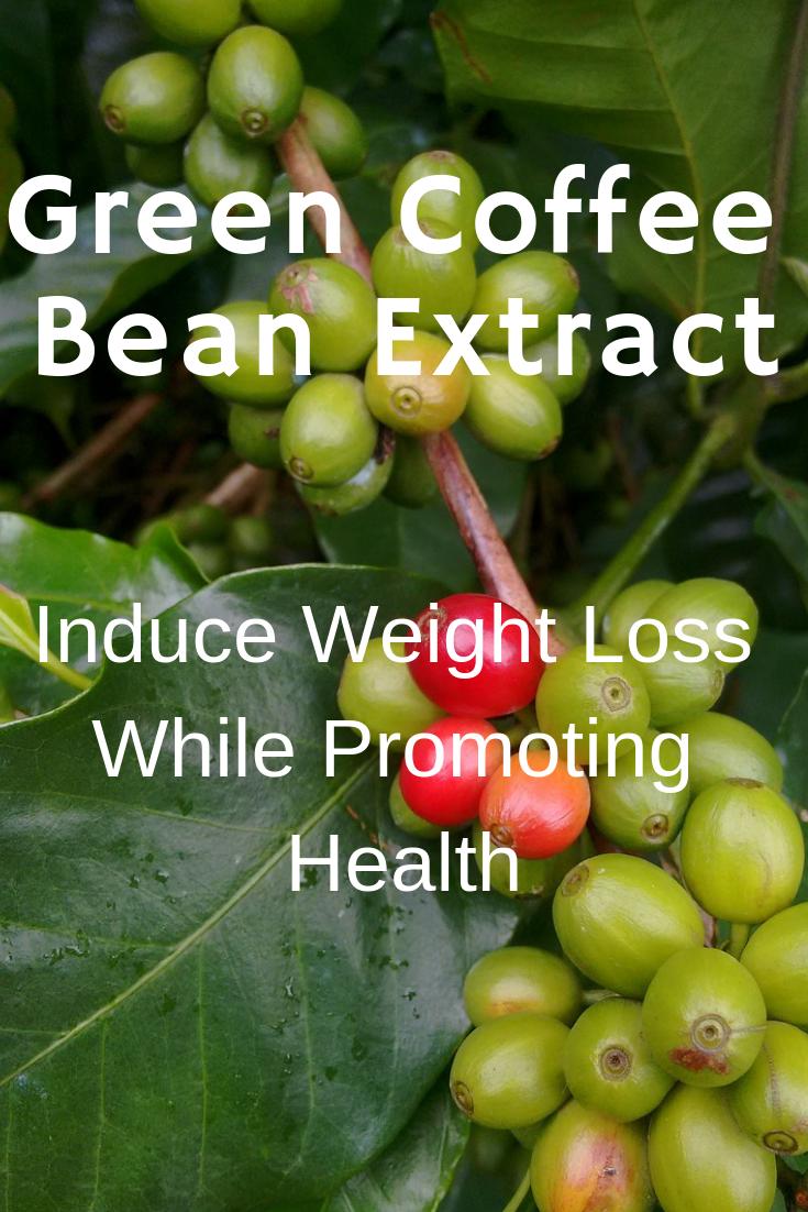 Green Coffee Bean Extract Benefits. Green coffee, Green