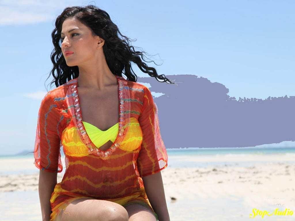 Veena Malik Photossms111 Provides Wide Range Veena Malik Wallpapers