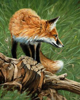 wildlife artists prints | Wildlife Artists NetLink - Wildlife art by 400 wildlife artists