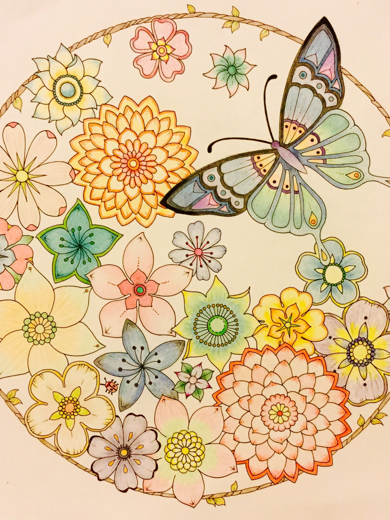 From Johanna Basfords Magical Jungle Flowers And Butterfly Mandala Finished 9 28 16