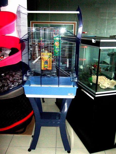 Bird Cage Siutable For Cockatiel Small Parrots New Bird Accessories Cockatiel Bird Cages