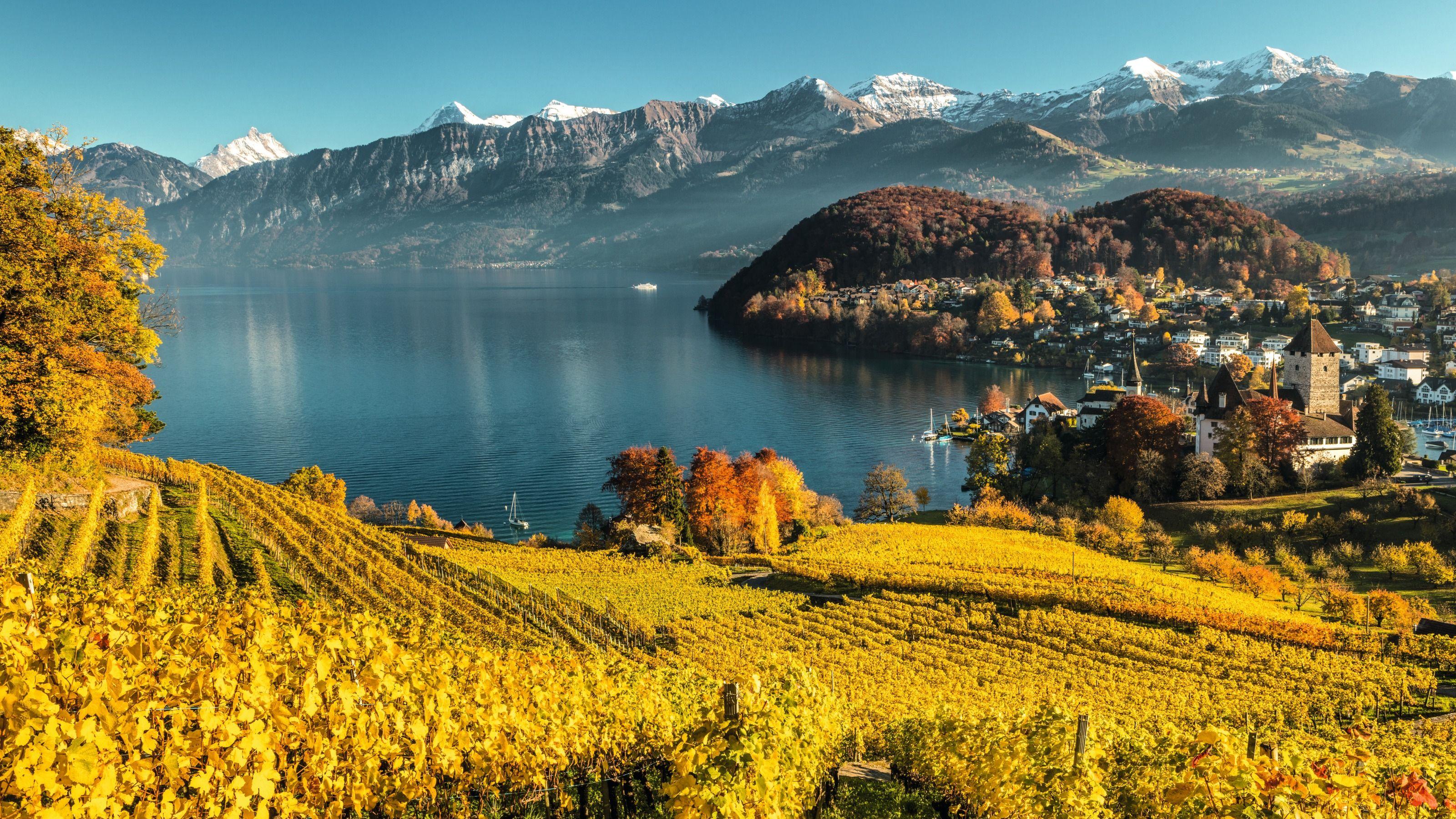 Viva el otoño suizo en todo su esplendor. Vacaciones