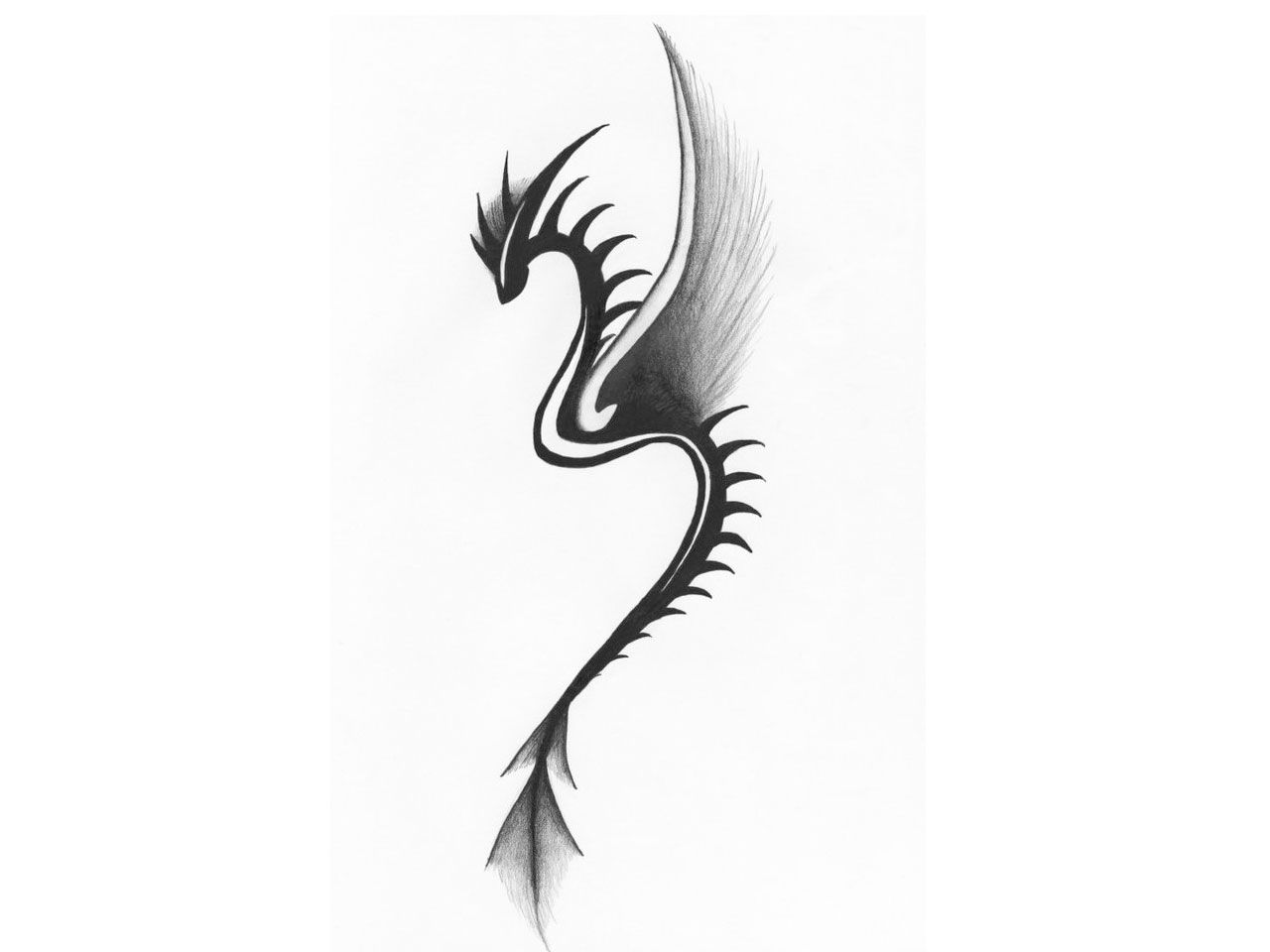 for Small dragon tattoos