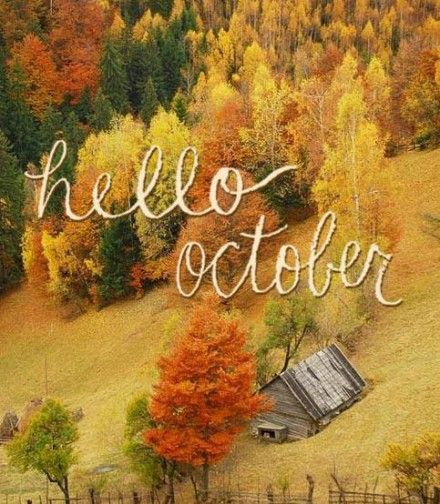 Tumblr Fall Quotes: Best 25+ Hello October Ideas On Pinterest