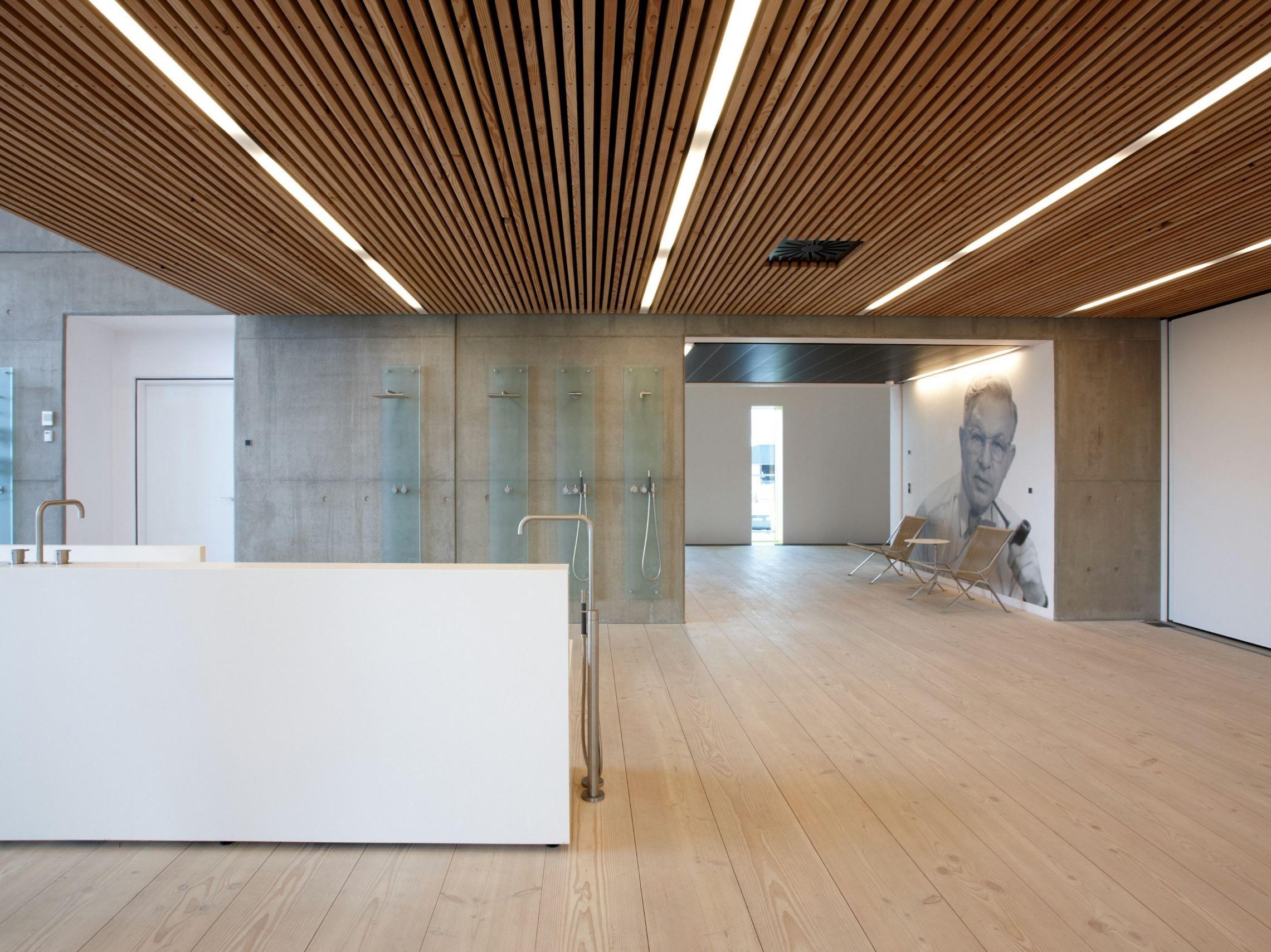 Falso techo imitación madera DINESEN CEILING - Dinesen | Ceilings ...