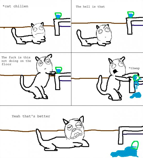 I am glad other cats are like this too