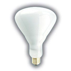 75 65 Watt Br40 Floodlight 10 000 Hours Long Life Light Bulb Br40 Flood 130 Volts By Unknown 4 99 Supra Life 10 000 Hour Incandescent Light Bulbs Are Enginee