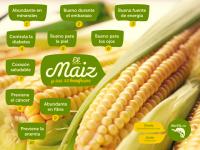 Beneficios del maiz #comerbien #vidasana #alimentos #salud #maiz