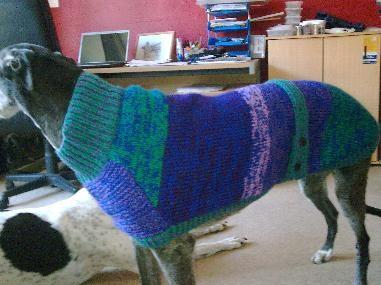 Gorgeous knitting pattern for greyhound coat | Knitting ...