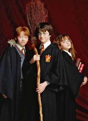 Harry Potter, Hermione Granger et Ron Wesley