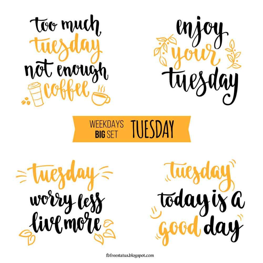 Funny Tuesday Quotes To Be Happy