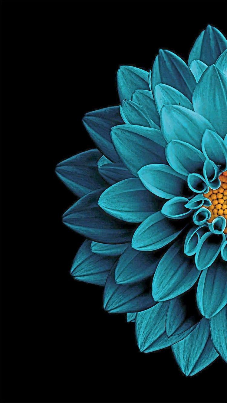 Background Image By Amm Wahid Black Background Wallpaper Blue
