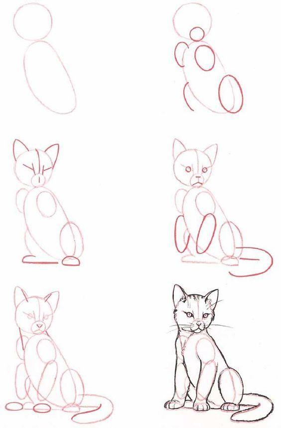 Apprendre à Dessiner Un Chat : apprendre, dessiner, Réaliste, Plus:, Dessin, Chat,, Comment, Dessiner, Croquis