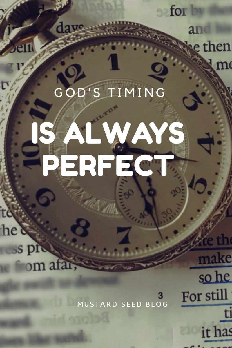 Gods timing is always perfect christian living trust god and have you been waiting for what seems a long time for god to answer a solutioingenieria Image collections