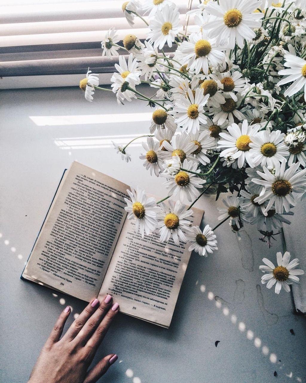 Like Fairy Tales By Sevetlana Marinina Konfemylee Flower Aesthetic Book Aesthetic Book Photography