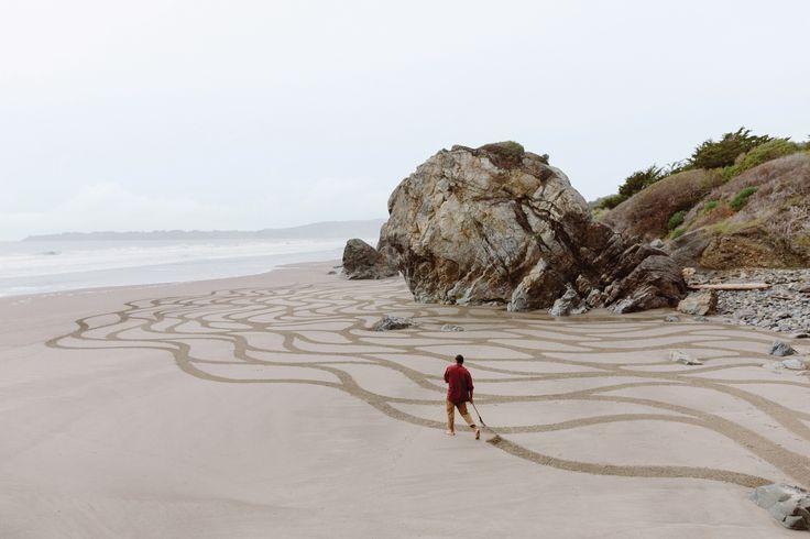 nirav patel lines in the sand - Поиск в Google