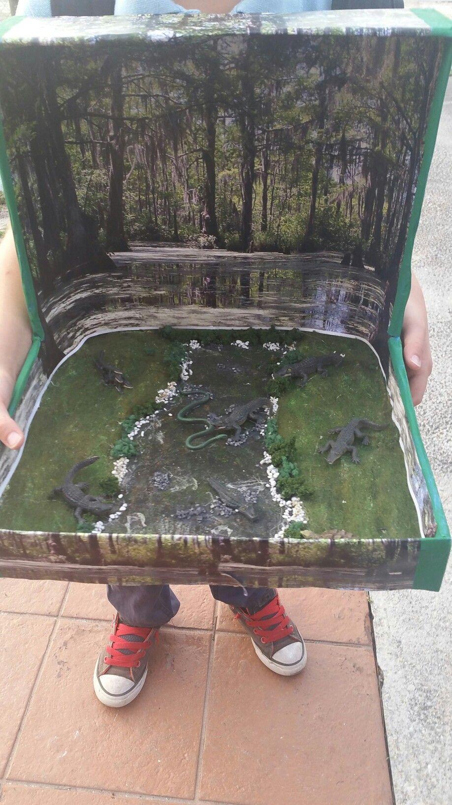 Kids Diorama With Details: Alligator Diorama In A Shoebox