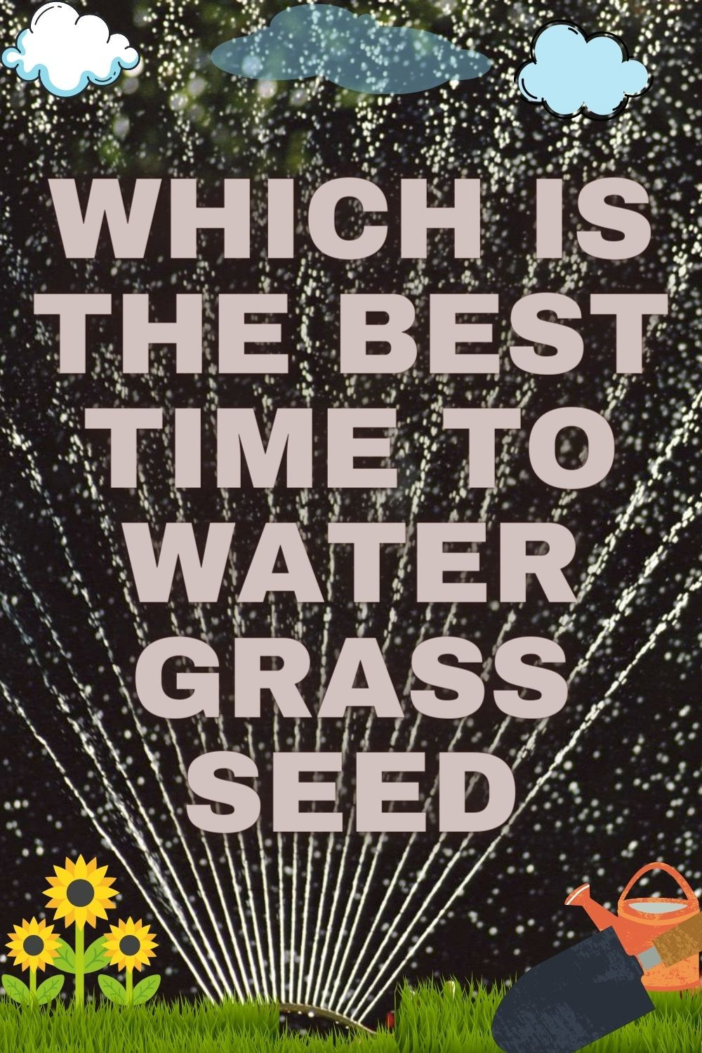 The Best Time To Water Grass Seed If Don T Worry You Are At The Right Station The Abidance Which Is Called Grass Seed Watering I In 2021 Grass Seed Water Grass