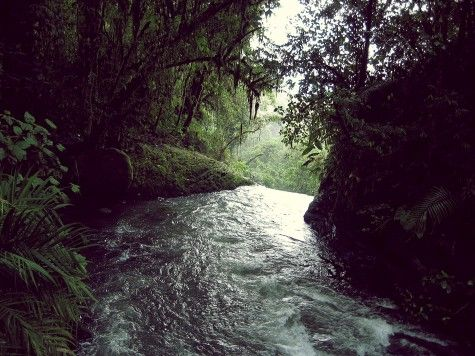 Waterfall La Paz