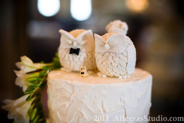 MY GOD IF I DONT HAVE THESE ON MY WEDDING CAKE SOMEONE IS GETTING - Owl Wedding Cake