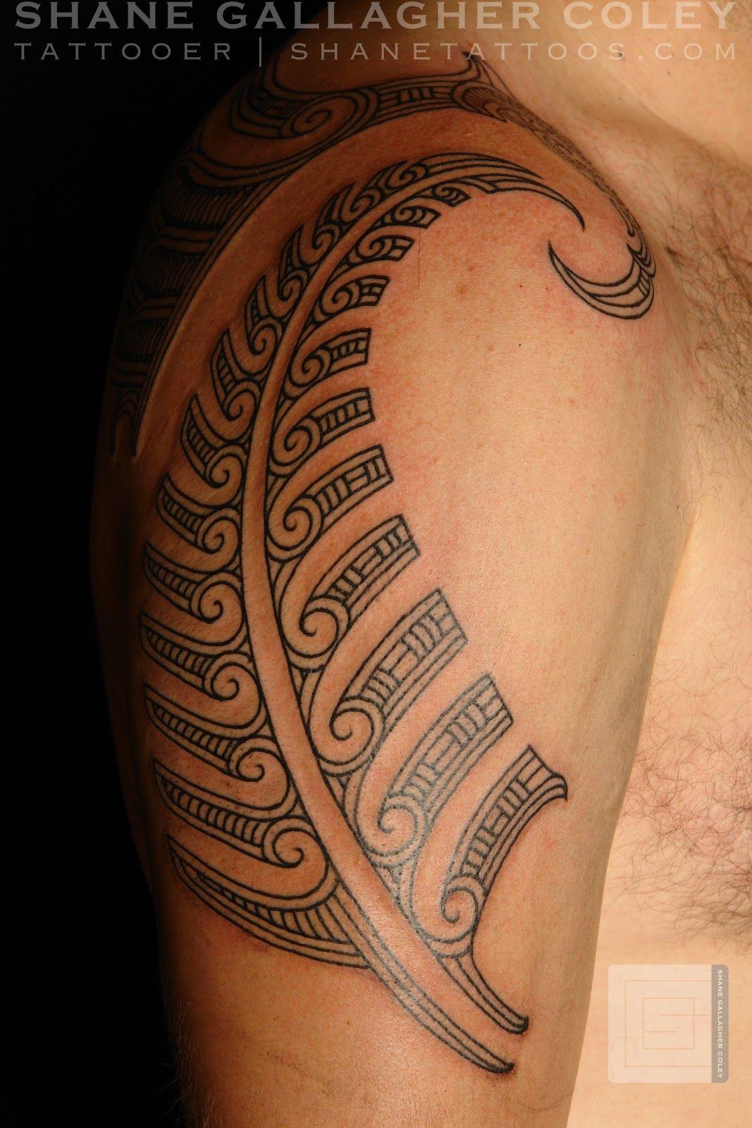 Maori Fern Tattoo: Image Result For Maori Fern Tattoos