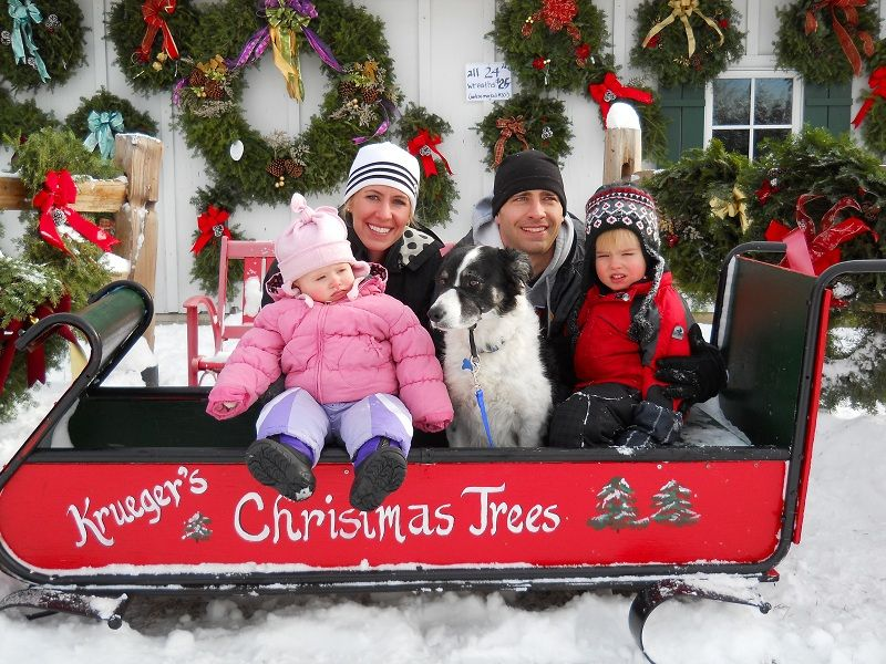 Find REAL Minnesota Grown Christmas trees from Kreuger's Christmas Trees in Lake Elmo, Minnesota ...