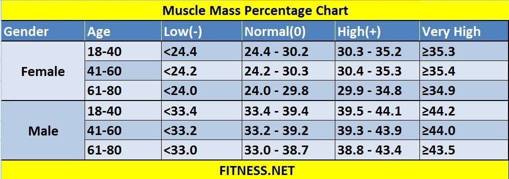 Everything about muscle mass percentage with charts For me