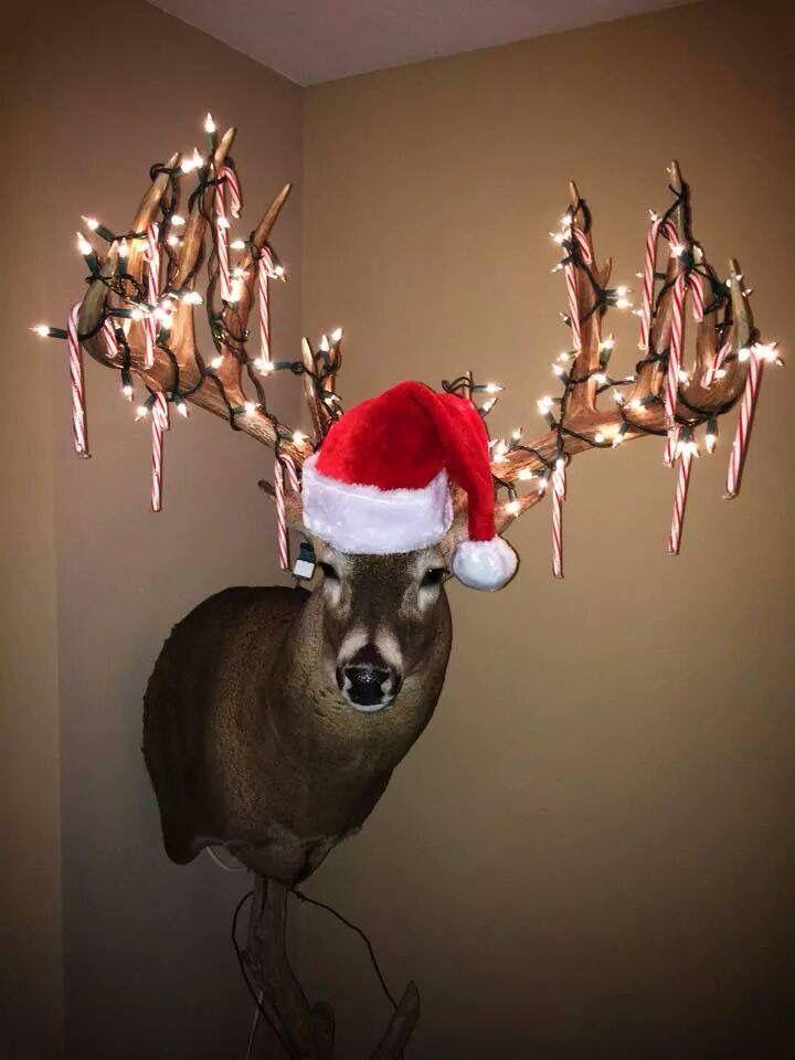Santa S Deer Deer Head Decor Christmas Deer Head Decor Deer Decor
