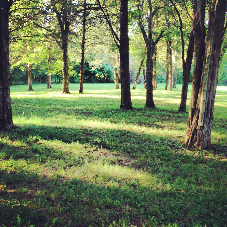 Winstead Hill park-Franklin,Tn